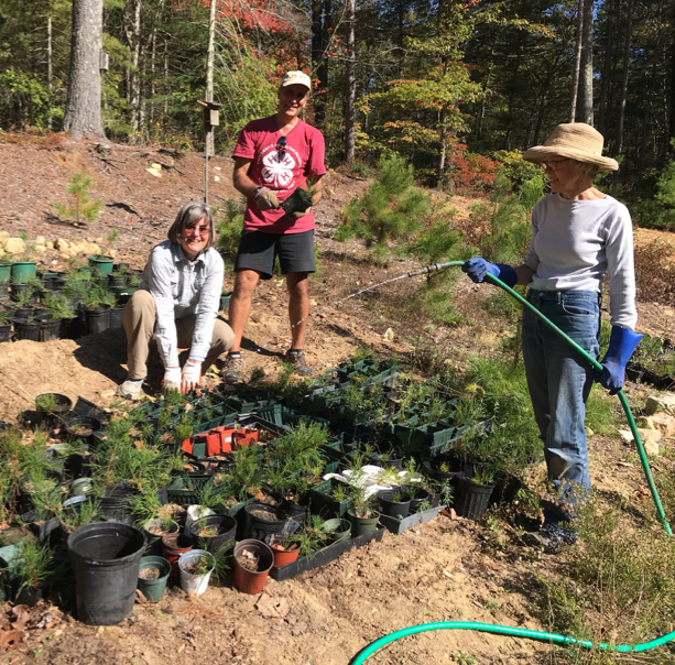 Board members caring for our native plant garden.