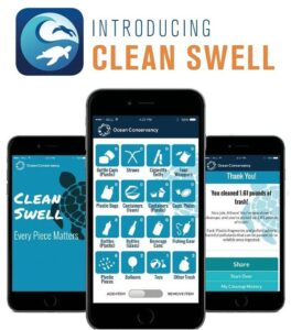 cleanswell